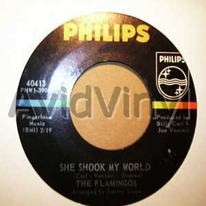 FLAMINGOS - She Shook My World / Itty Bitty Baby Record