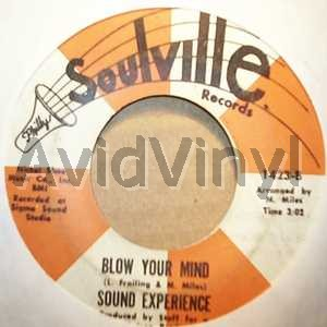 40 ACRES AND A MULE BLOW YOUR MIND by SOUND EXPERIENCE