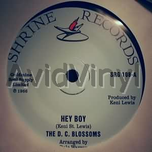 HEY BOY I KNOW ABOUT HER by D C BLOSSOMS